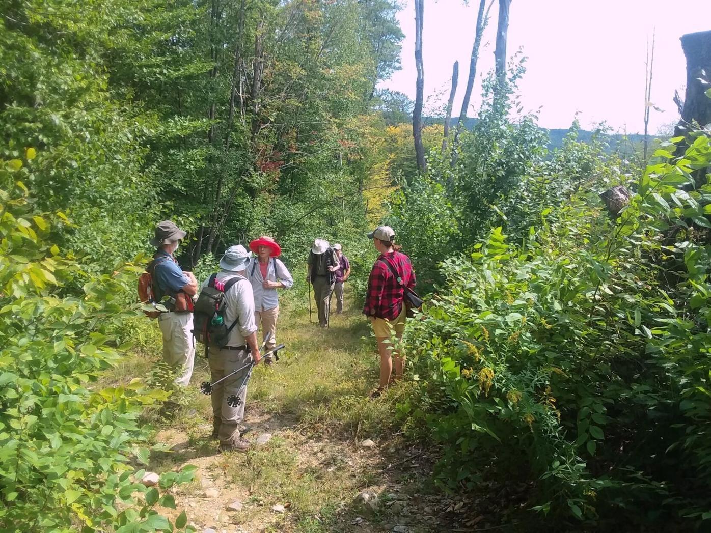 Massey hike