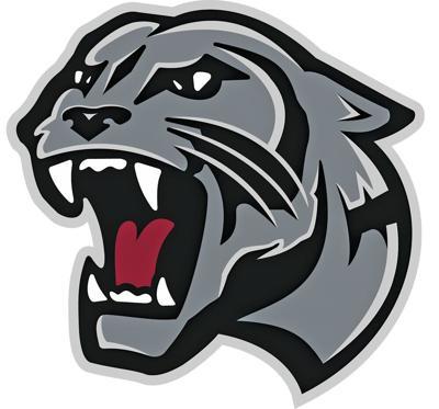 Benton Panther