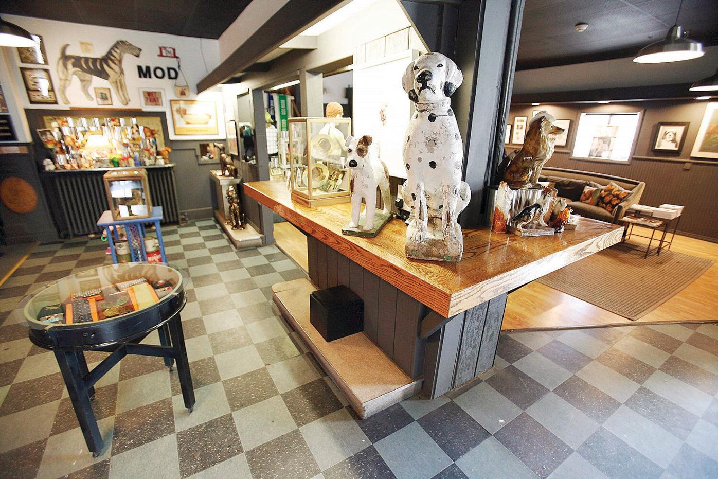 Questions follow abrupt exit of North Adams dog museum founder