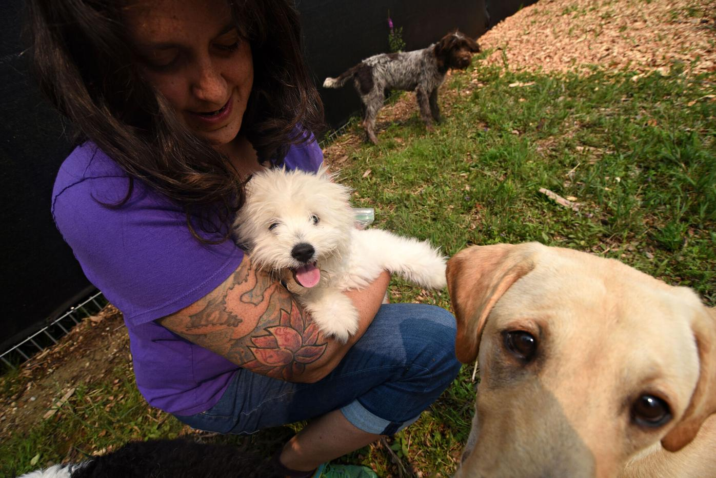Woman in a purple shirt cuddles small white dog