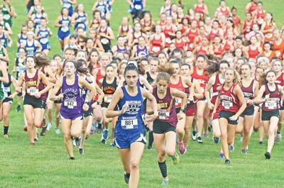 In modified cross-country season MIAA calls for dual meets, staggered starts