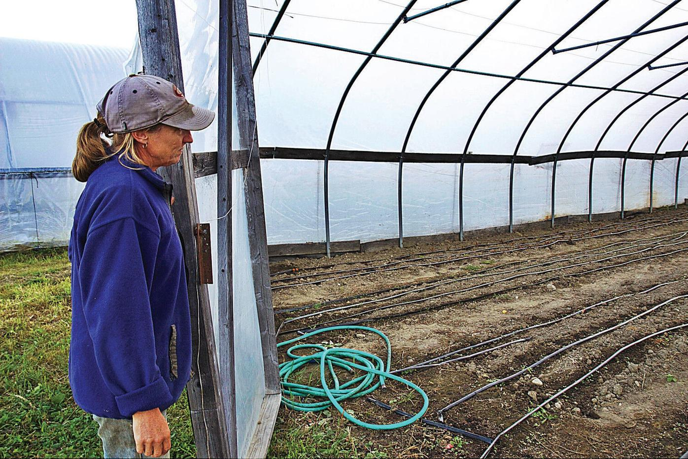 Honoring original CSA's legacy at Indian Line Farm