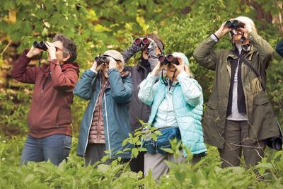 Berkshire County wildlife sanctuary trails reopen to the public