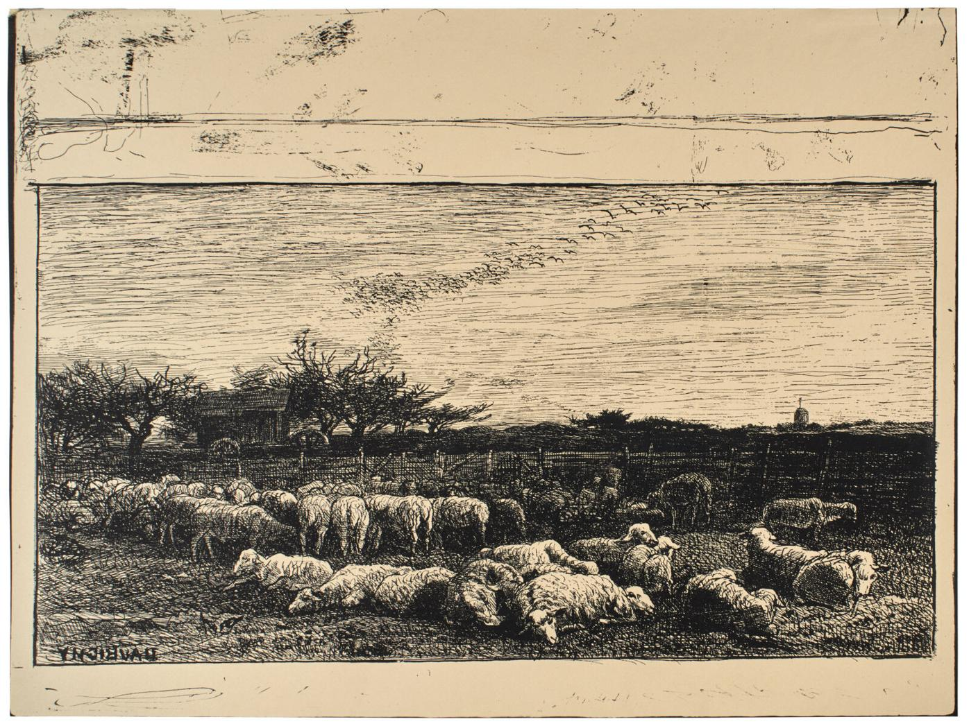 The Large Sheep Pasture