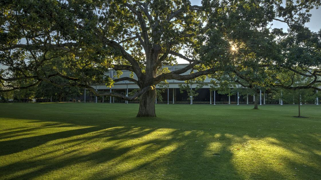 Clarence Fanto | The Bottom Line: Tanglewood aims to hit the right notes on safety, tradition