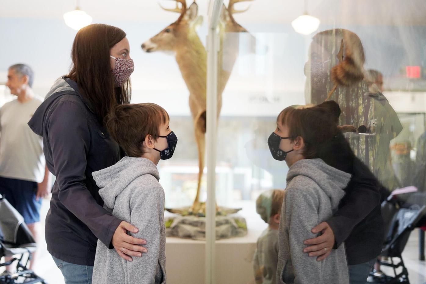 Family looks at sculpture