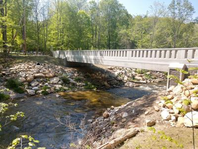 NM bridge (copy)