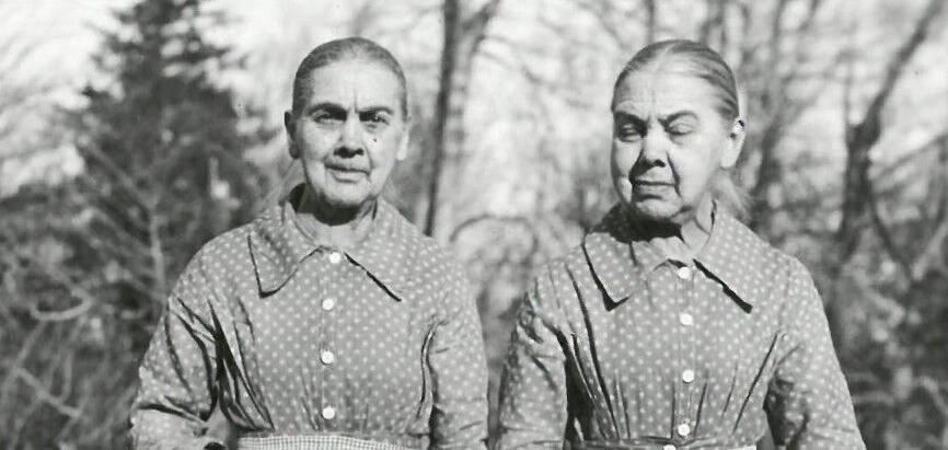 The Pierce Twins