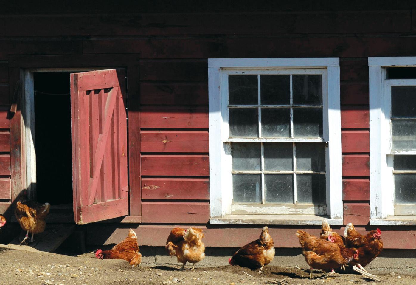Gould Farm celebrates a century of community in Monterey