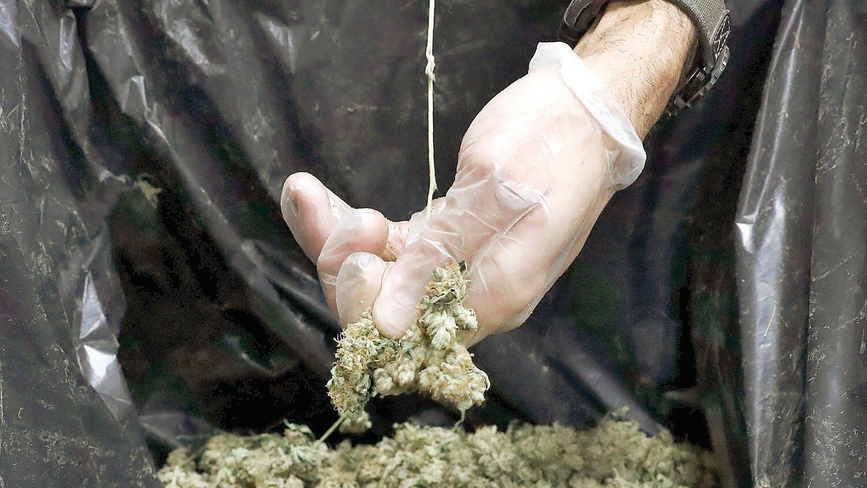 Plaintiffs drop suit over marijuana delivery rules