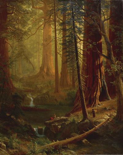 'Giant Redwood Trees' will fall at Berkshire Museum despite interpretive value