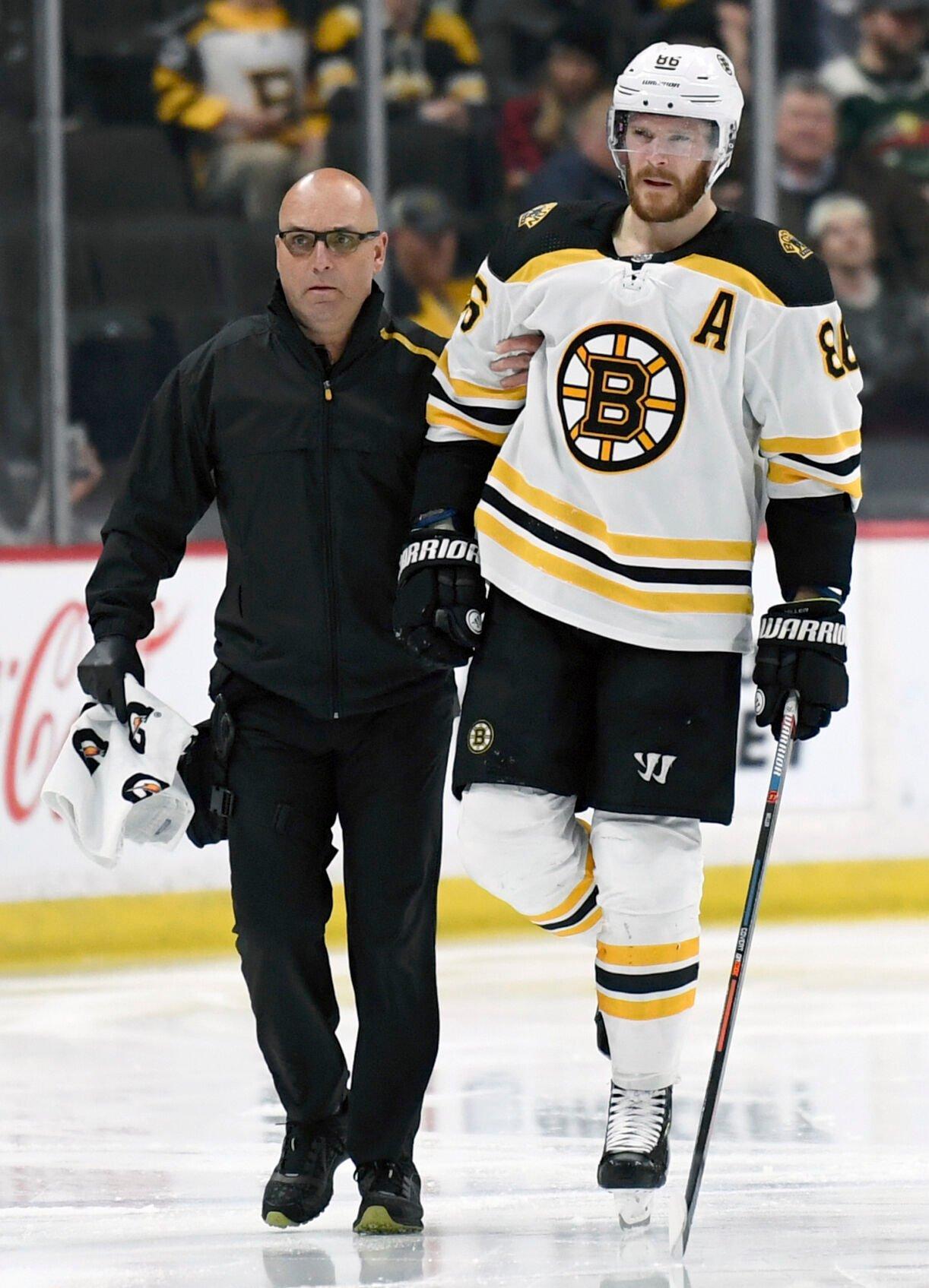 Bruins Wild Hockey