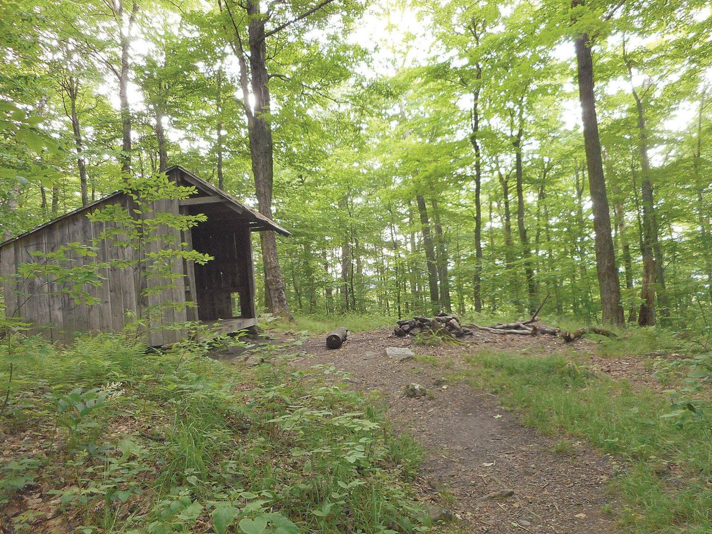 Lauren R. Stevens | Hikes and Walks: How to follow Thoreau up Mount Greylock