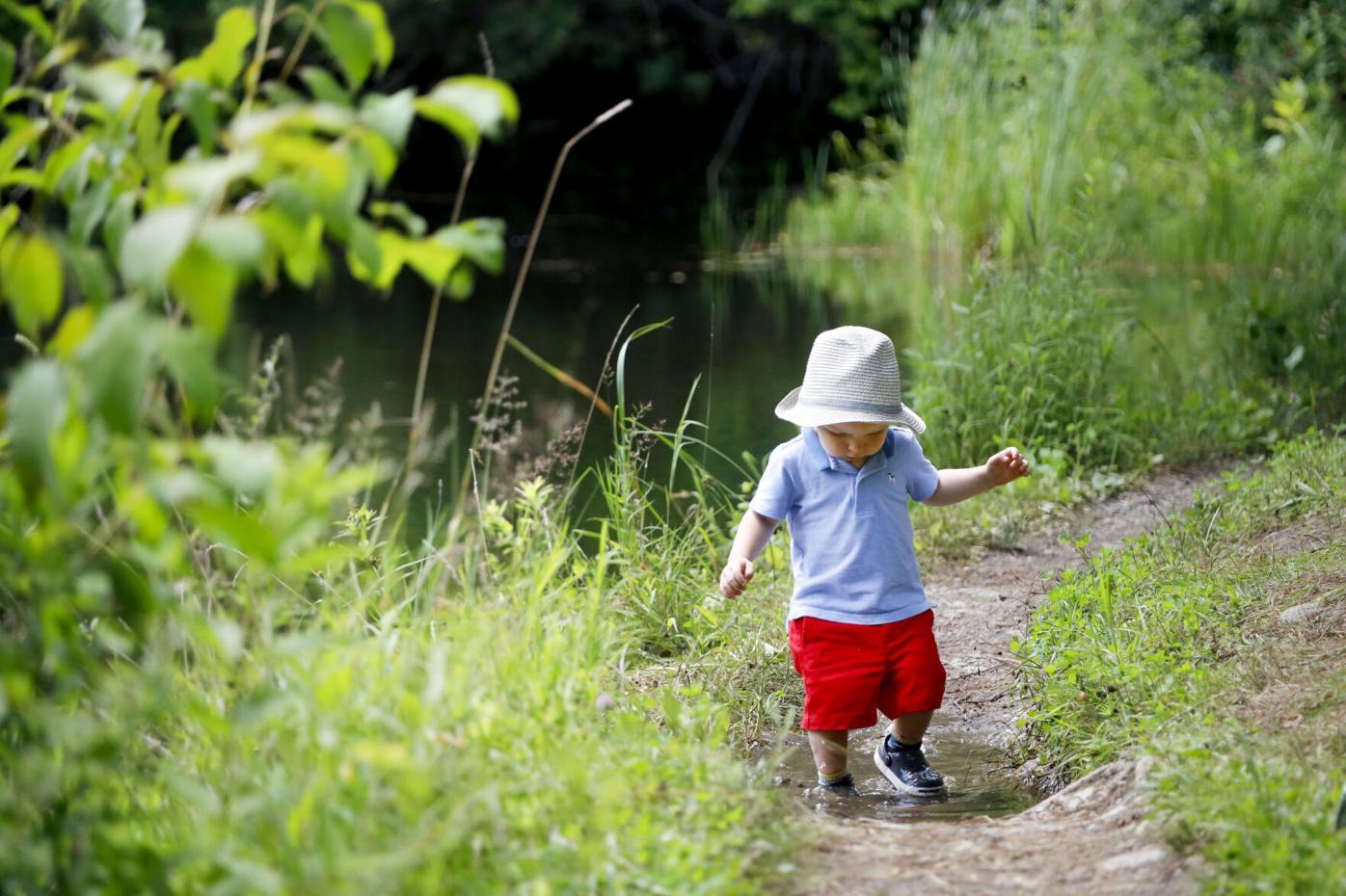 small boy walks through puddle
