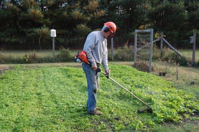 Man with weed wacker in garden