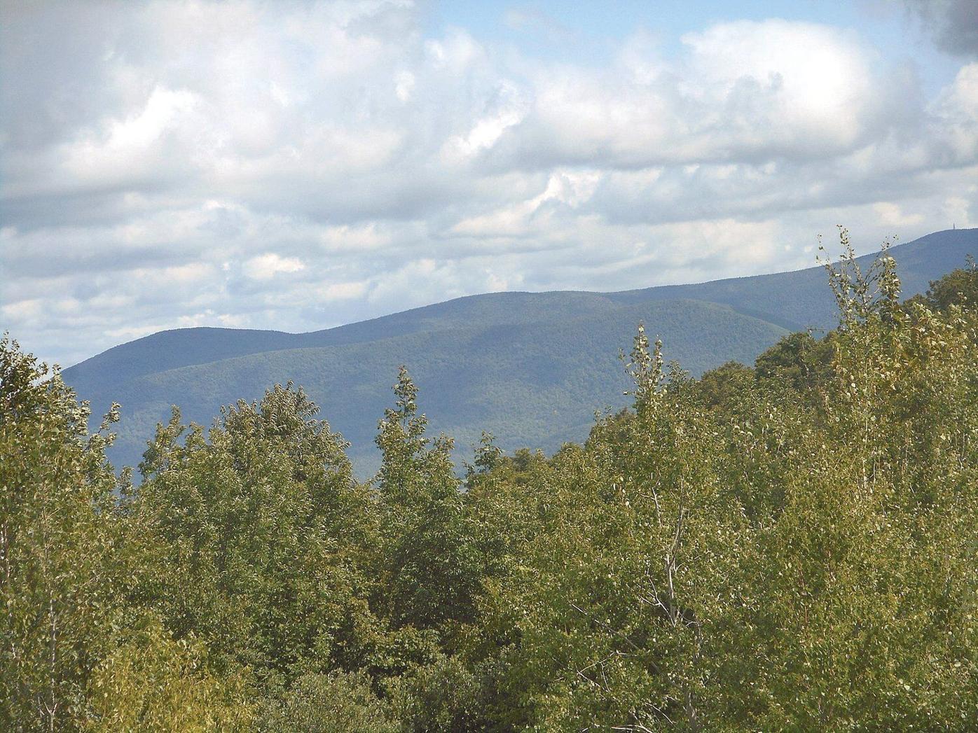 Lauren R. Stevens | Hikes & Walks: Head through Tenney land to get to Petersburg Pass