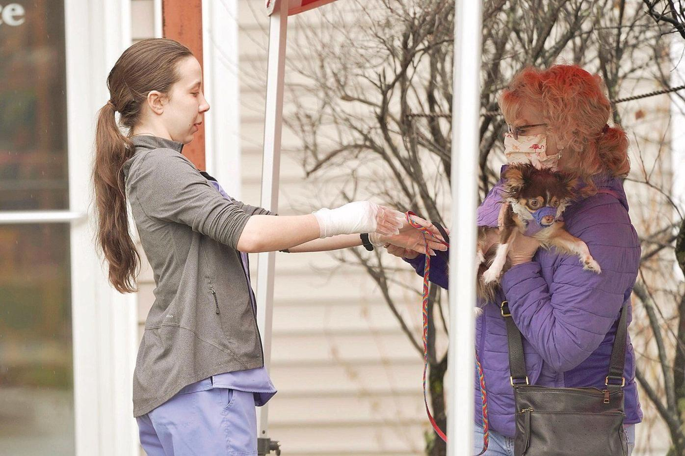 Berkshire veterinarians open for essential services; hours reduced