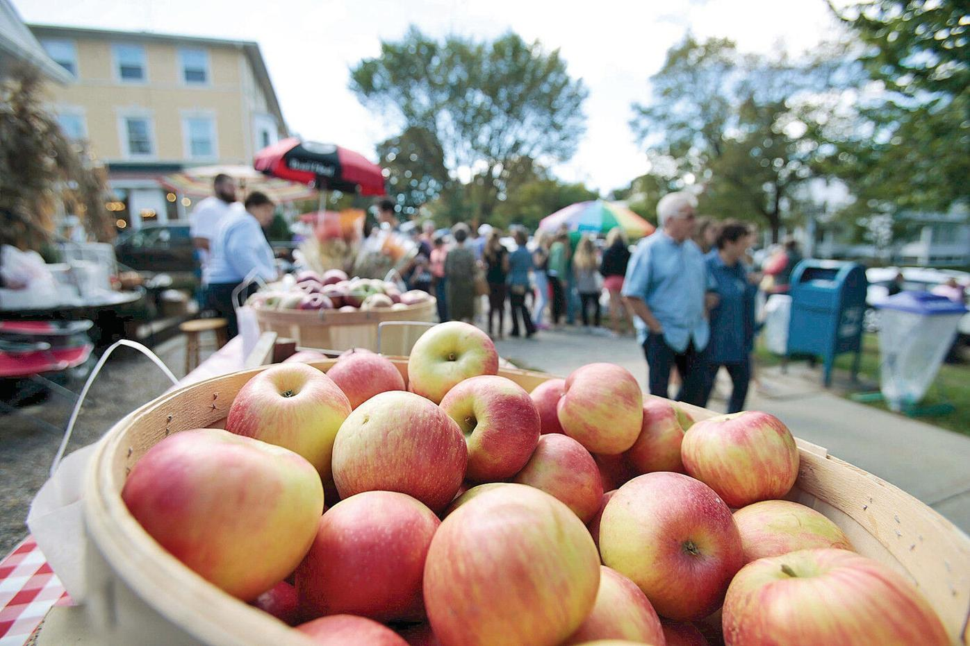 More than just apples at the Lenox Apple Squeeze