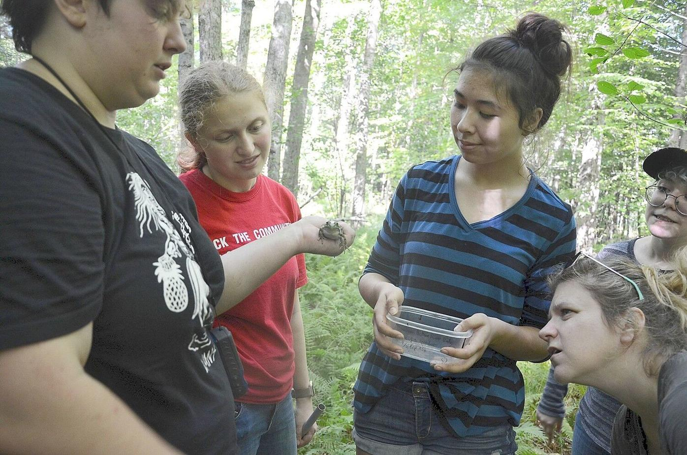 Berkshire Bioblitz gives life sciences students hands-on experience