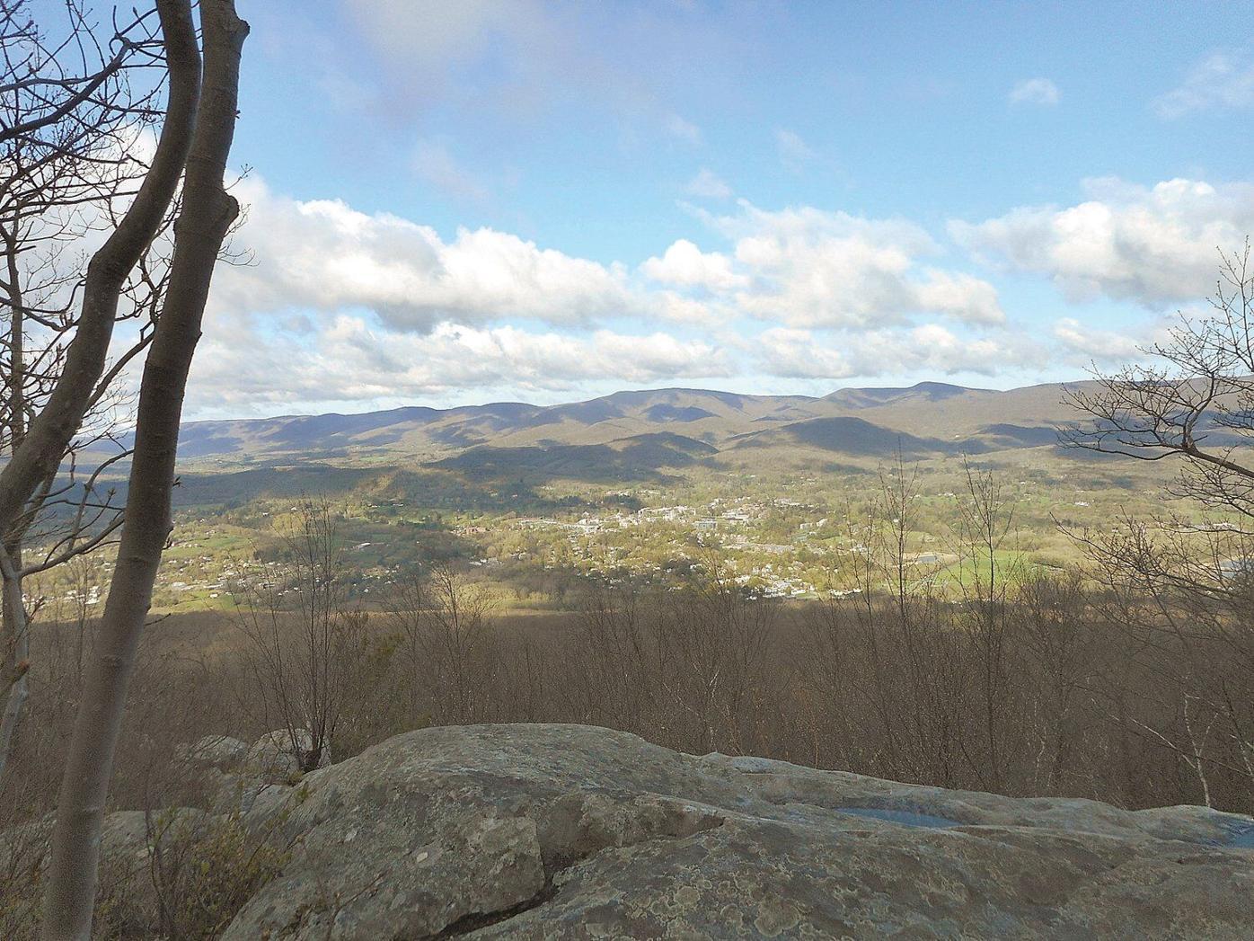 Lauren R. Stevens | Hikes & Walks: Searching for azaleas from East Mountain to Pine Cobble
