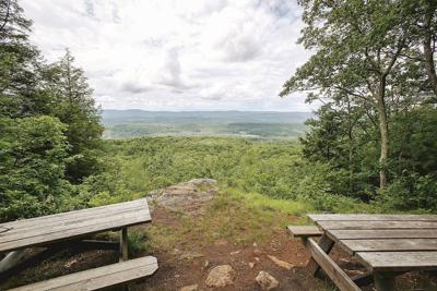 Beartown State Forest (copy) (copy)