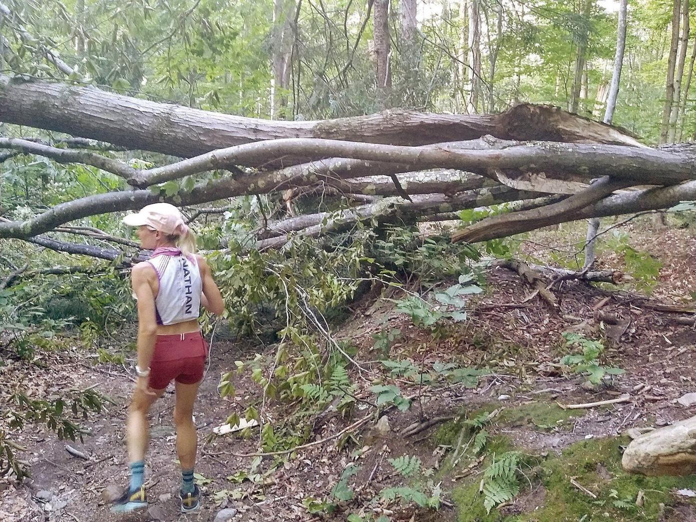 Mike Walsh | Runner's High: Mercury's Appalachian Trail quest routes through Dalton