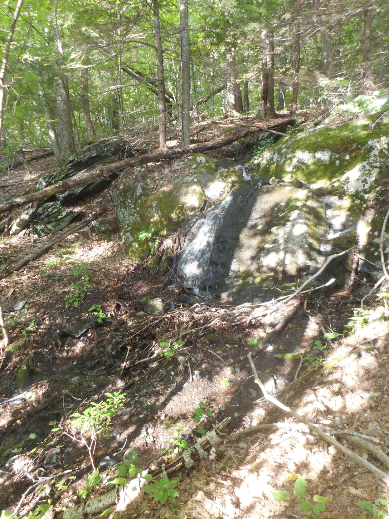Steep section of PV Ledges Trail