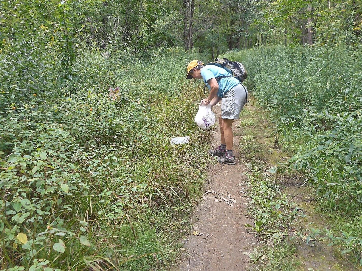 Lauren R. Stevens | Hikes and Walks: Greylock Glen readying new trails to welcome hikers and more