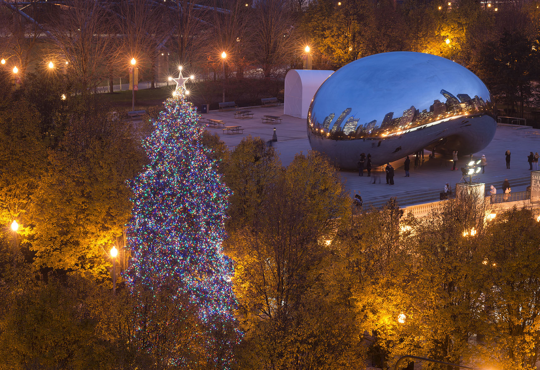 Chicago Christmas Tree lighting & City to begin holiday season with tree-lighting ceremony ...