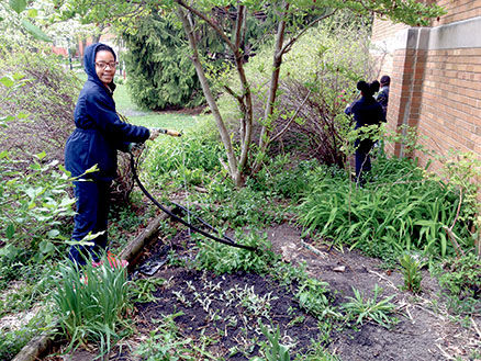 Kellogg Garden Club works on spring gardens   School News ...