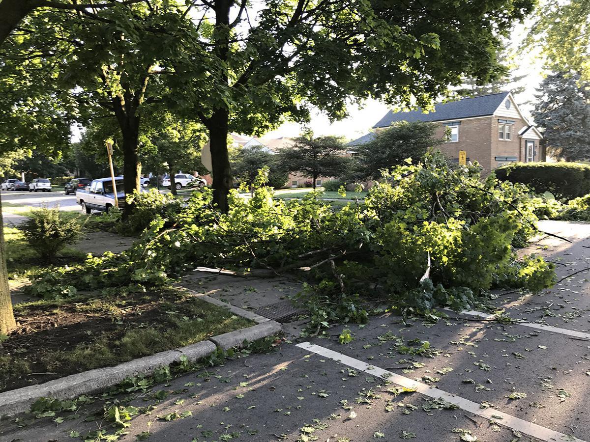 8-10-20 storm damage-2.jpg