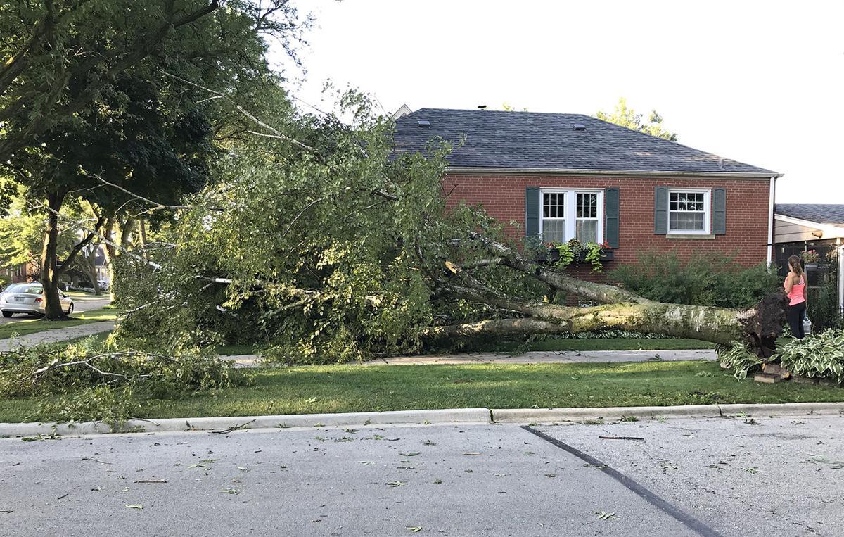 8-10-20 storm damage.jpg