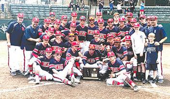 St Rita sectional 2019