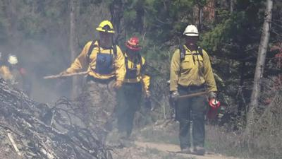 Wildfire Firefighters