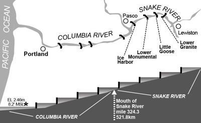 Snake River Dams