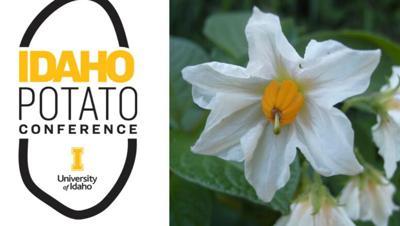 Idaho Potato Conference