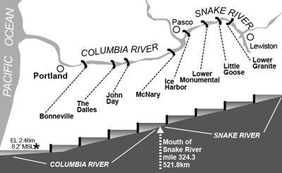 Snake & Columbia Dams