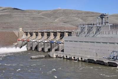 Little Goose Dam Public Crossing