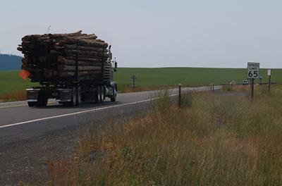 US95 Near Culdesac