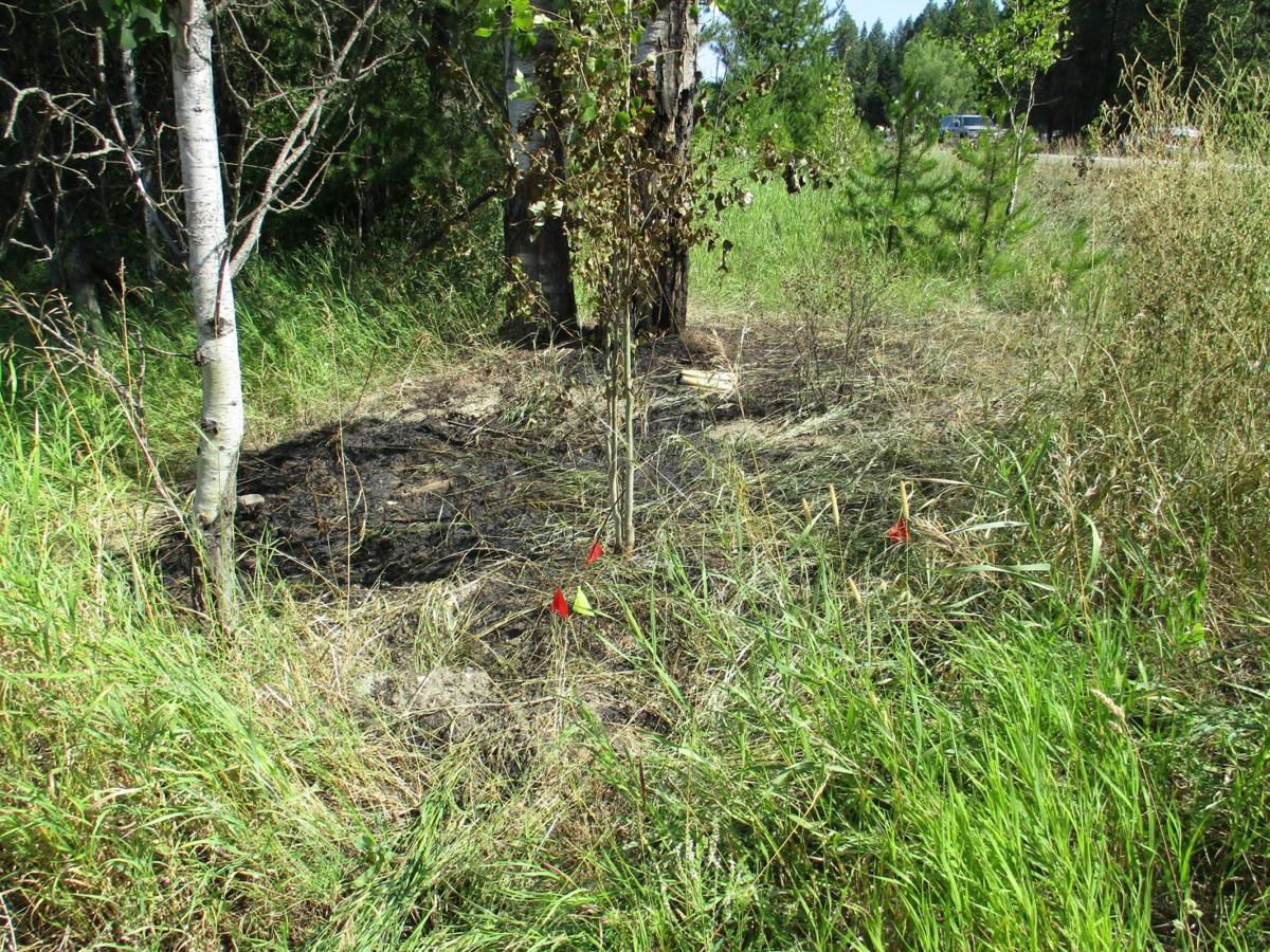 US95 Highway Fire 728 (1)