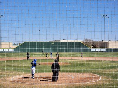 Steer Baseball