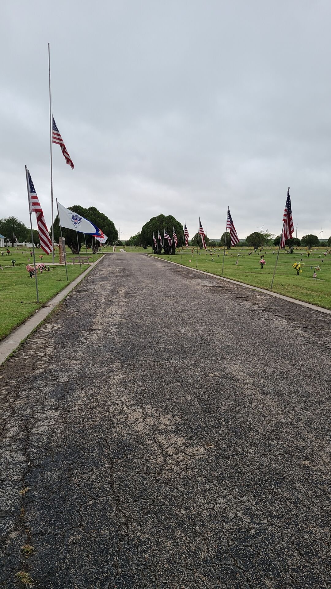 Flags at Trinity Memorial