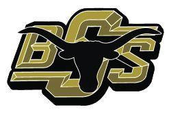 BSISD logo