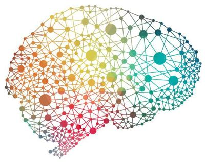 Neuroplasticity and the Picnic Game