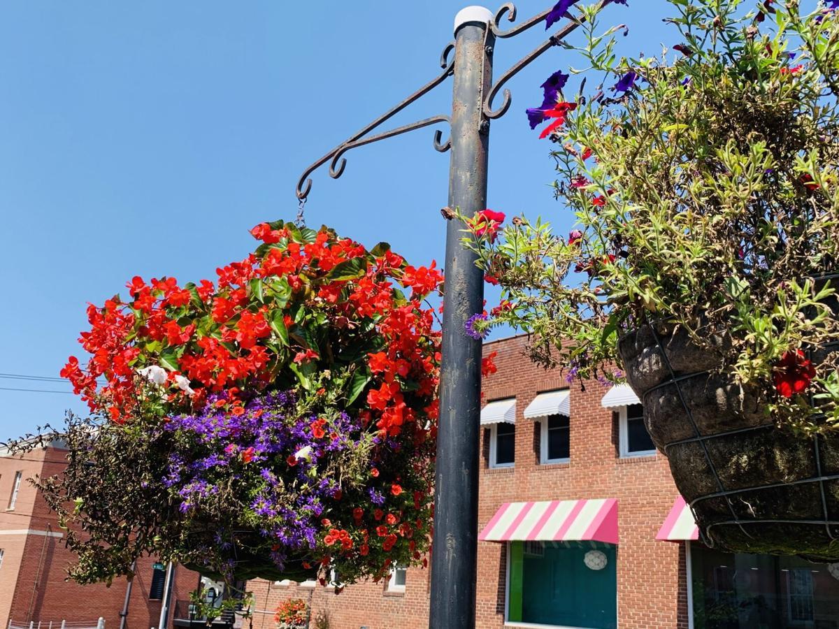Flower Basket 1.jpg