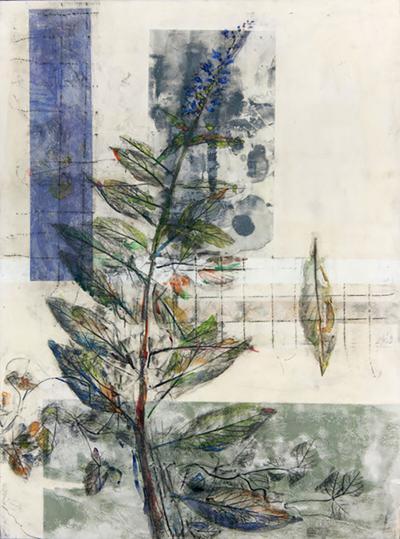 Lake Logan Botanical art workshop