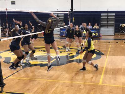 ACA Volleyball