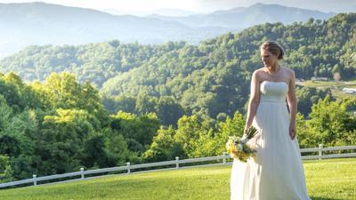 When Love Turns to Wedding Planning