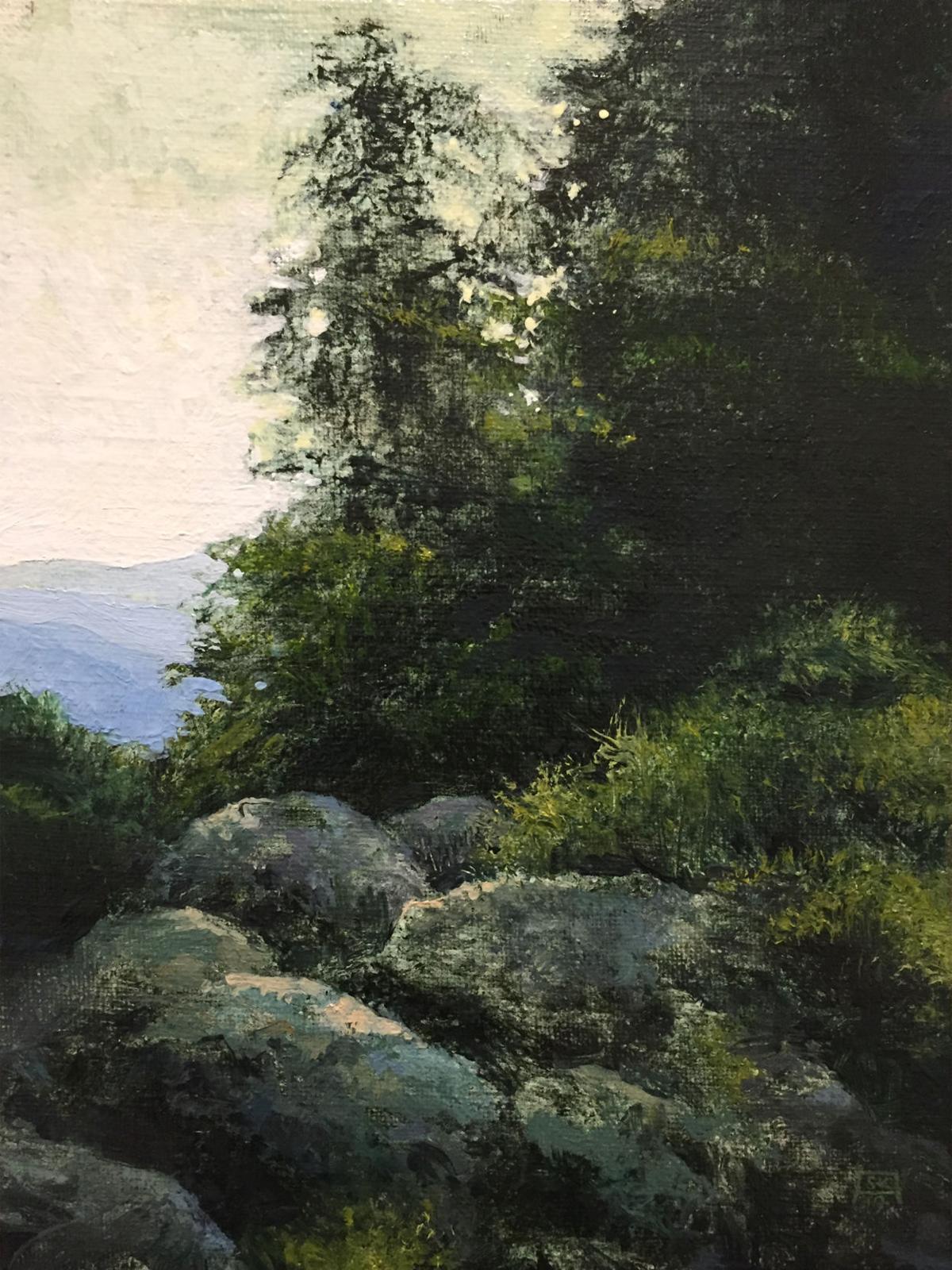 19-93 Elk Mtn View (study).jpg
