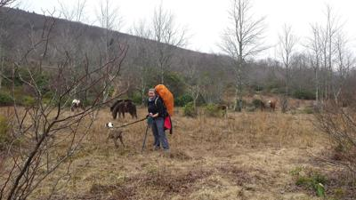 Hiking the Grayson Highlands